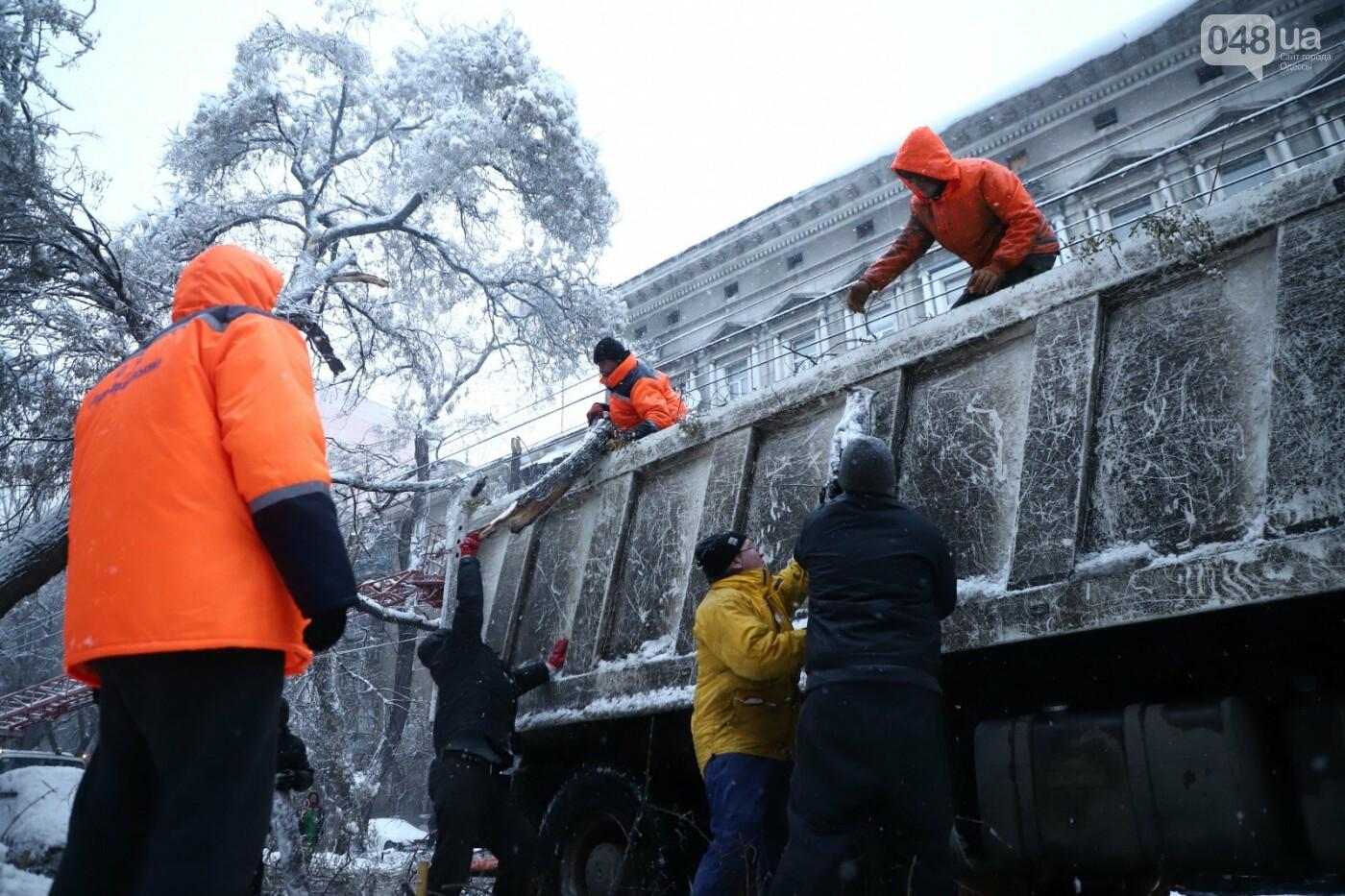 Труханов попросил одесситов сидеть дома и не мешать работать коммунальщикам, - ФОТО, ВИДЕО, фото-2