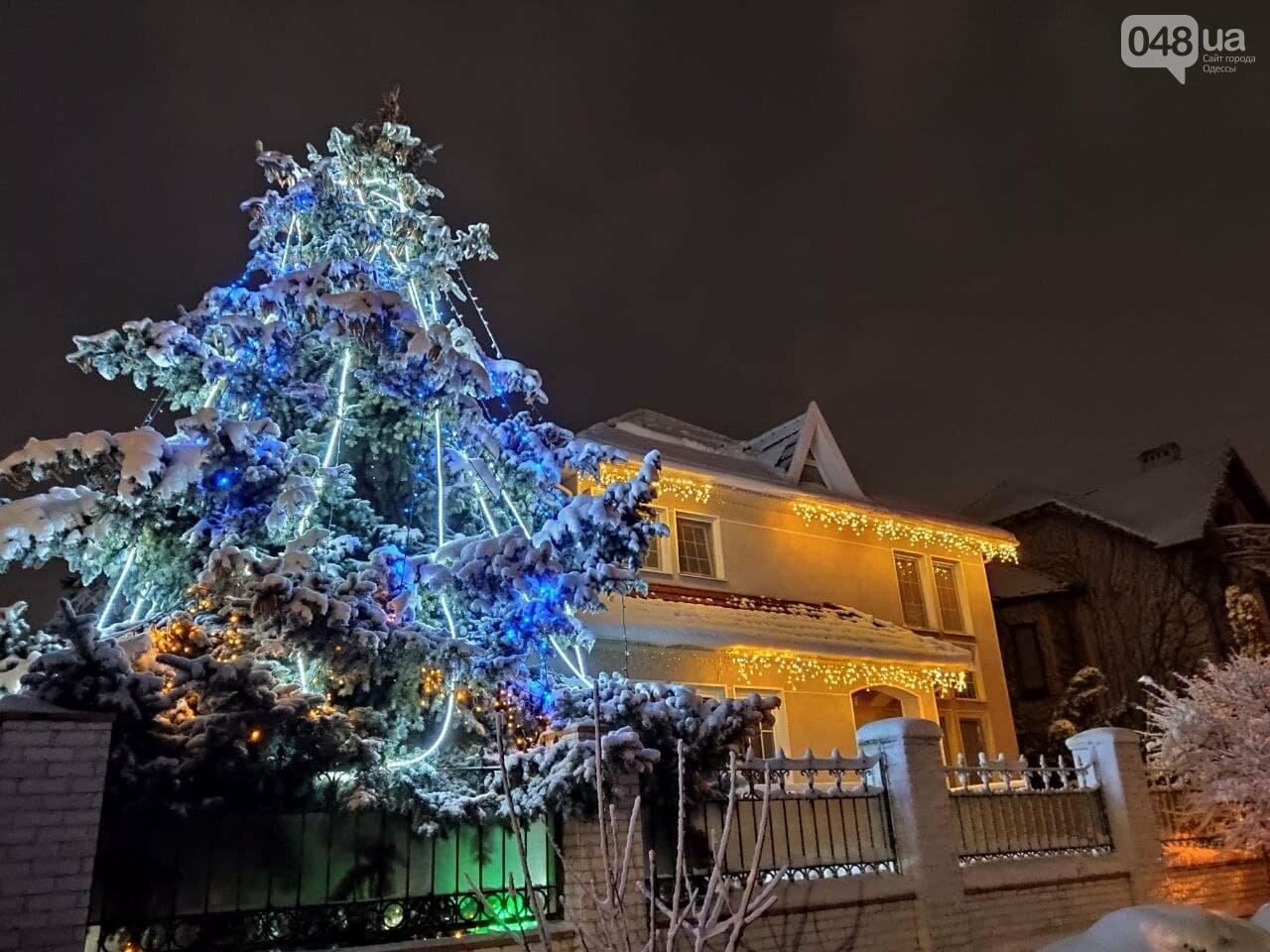 Зимняя сказка на одесской Рублевке: как выглядит Совиньон в снегу, - ФОТОРЕПОРТАЖ, фото-13