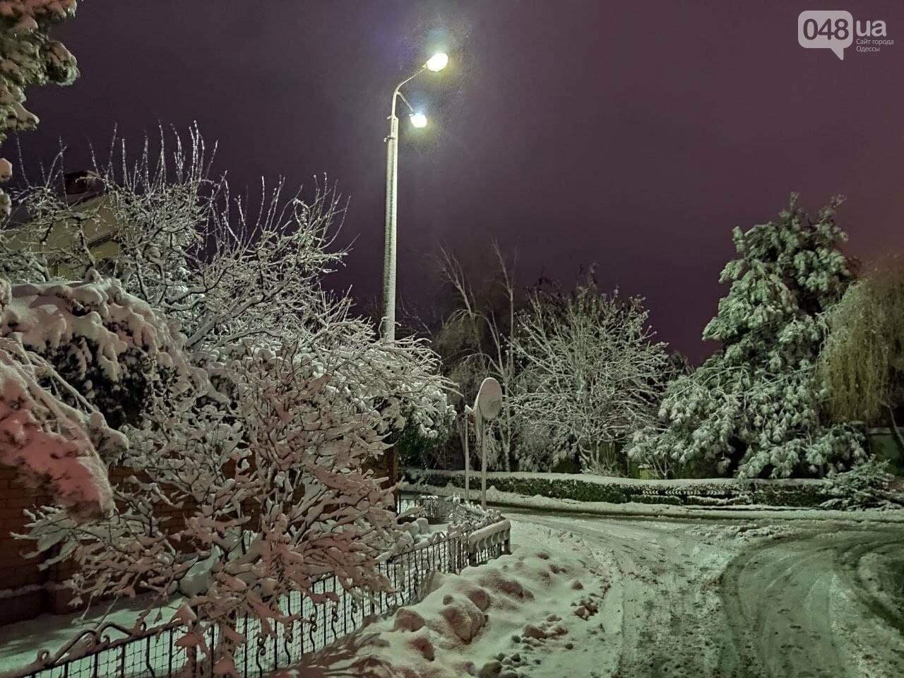 Зимняя сказка на одесской Рублевке: как выглядит Совиньон в снегу, - ФОТОРЕПОРТАЖ, фото-15