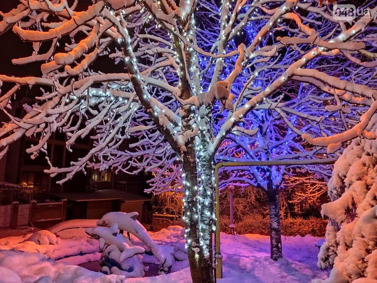 Зимняя сказка на одесской Рублевке: как выглядит Совиньон в снегу, - ФОТОРЕПОРТАЖ, фото-19
