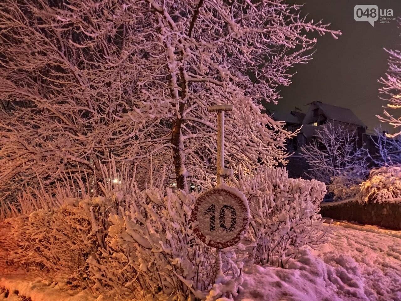 Зимняя сказка на одесской Рублевке: как выглядит Совиньон в снегу, - ФОТОРЕПОРТАЖ, фото-20