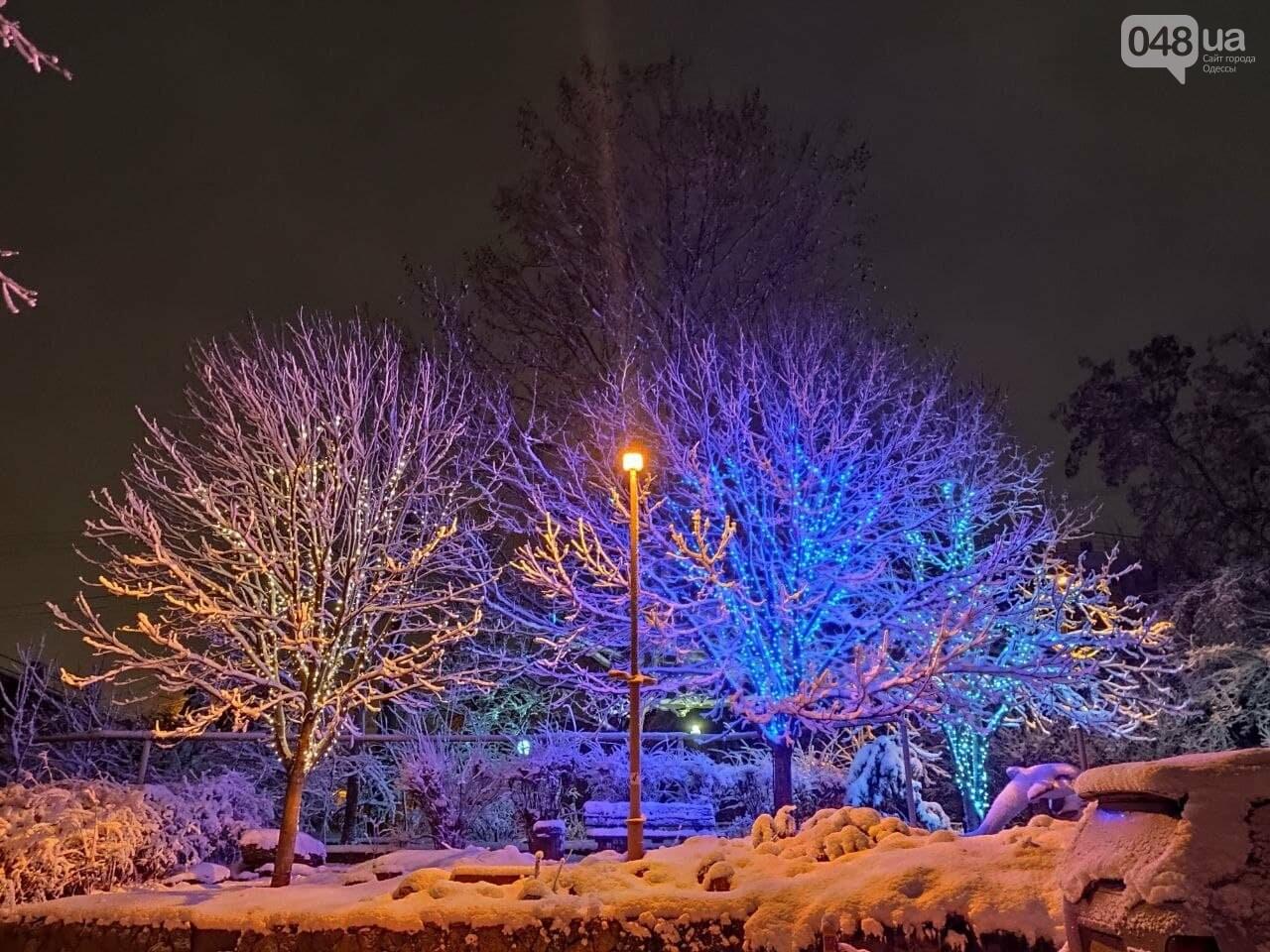 Зимняя сказка на одесской Рублевке: как выглядит Совиньон в снегу, - ФОТОРЕПОРТАЖ, фото-3