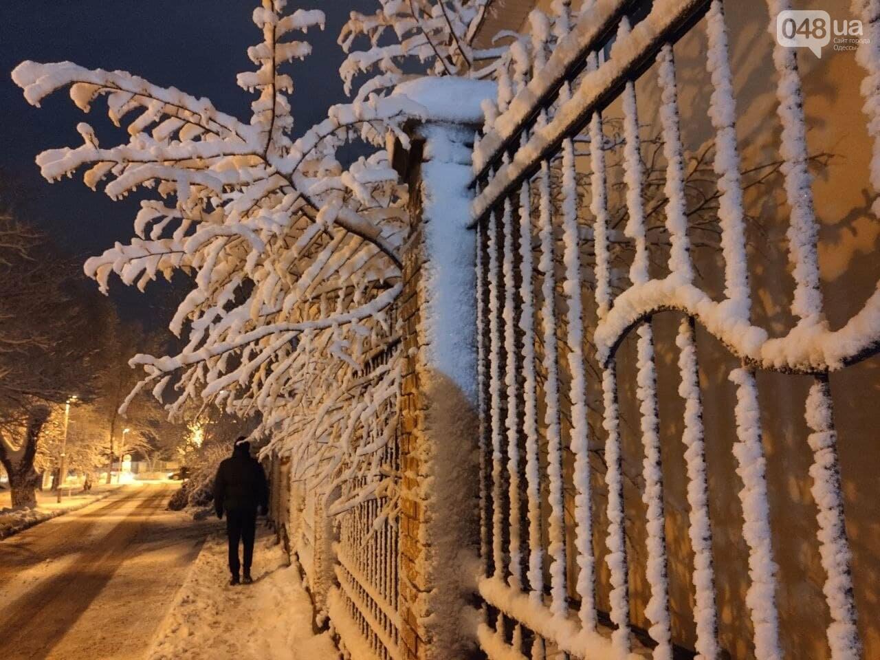 Зимняя сказка на одесской Рублевке: как выглядит Совиньон в снегу, - ФОТОРЕПОРТАЖ, фото-18
