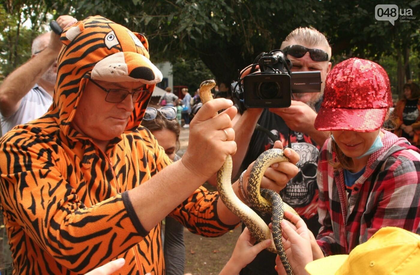 """""""У меня есть ощущение, что это я тигра родил"""": интервью с директором одесского зоопарка Игорем Беляковым, фото-3"""