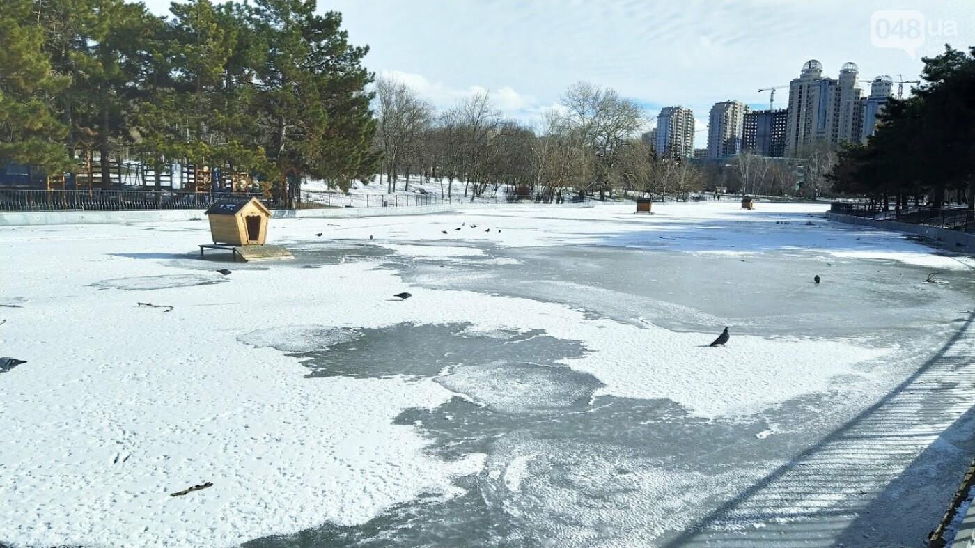 На замерзшем пруду в Одесском парке устроили спортивные состязания, - ФОТО, фото-19, ФОТО: Александр Жирносенко.
