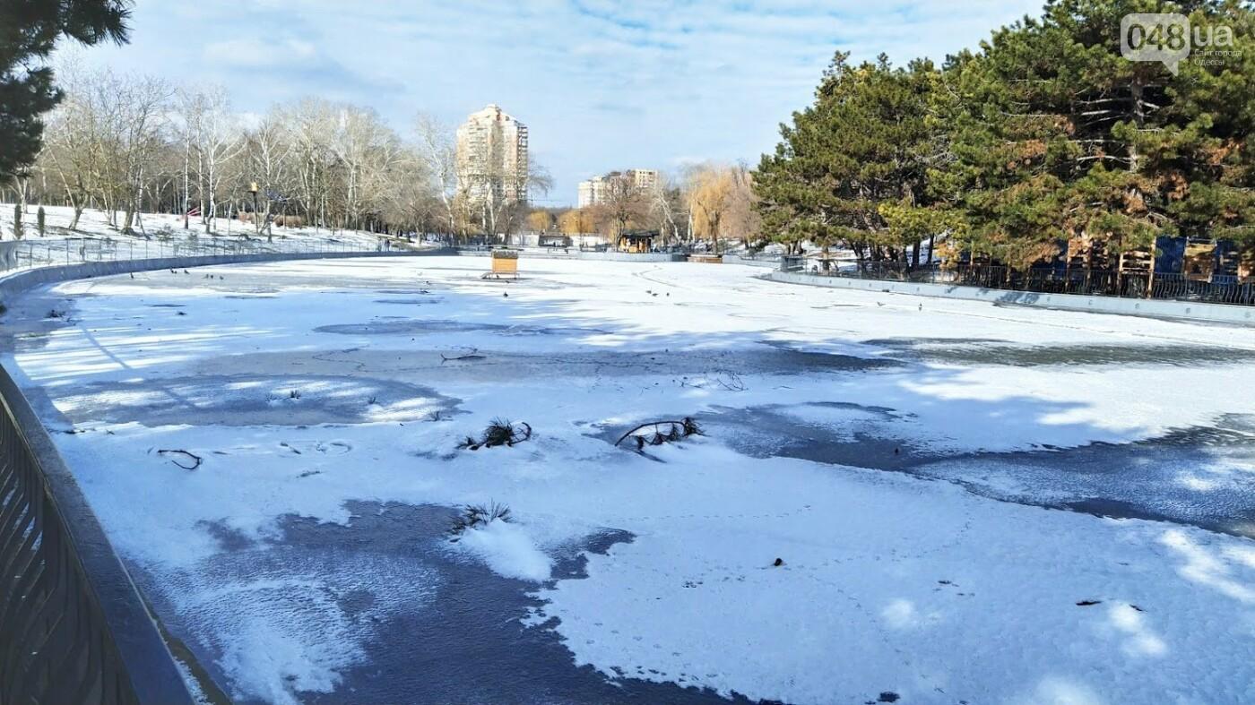 На замерзшем пруду в Одесском парке устроили спортивные состязания, - ФОТО, фото-20, ФОТО: Александр Жирносенко.