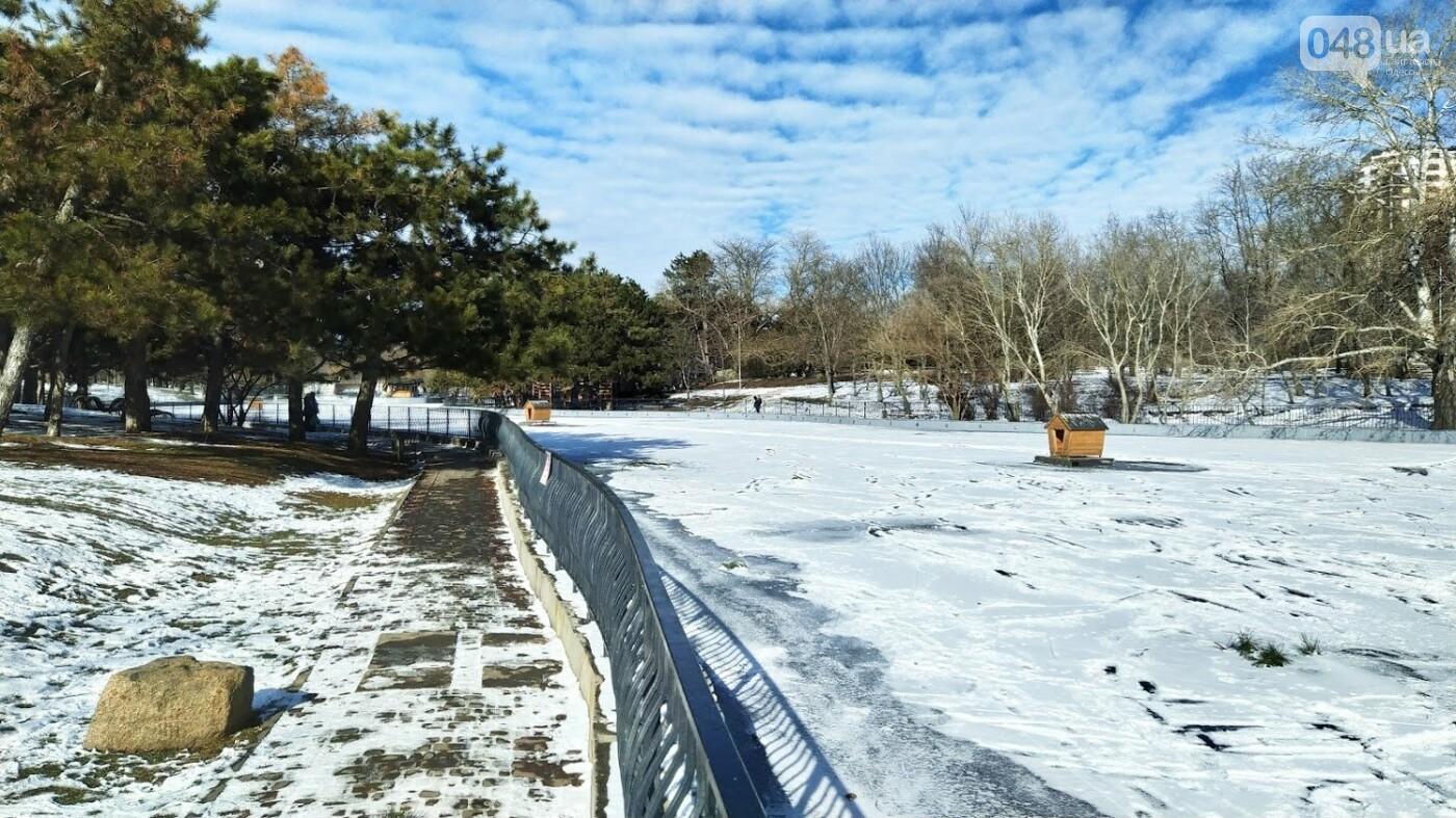 На замерзшем пруду в Одесском парке устроили спортивные состязания, - ФОТО, фото-22, ФОТО: Александр Жирносенко.
