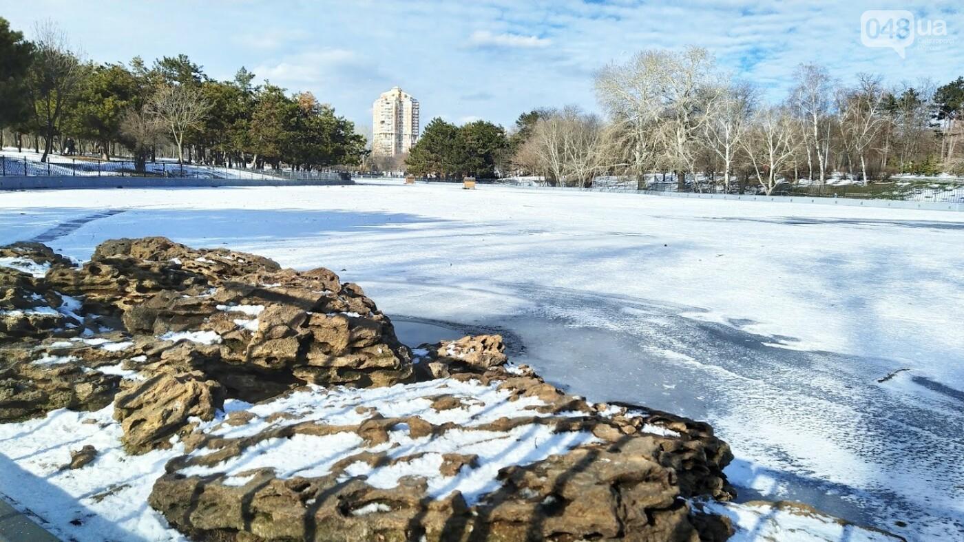 На замерзшем пруду в Одесском парке устроили спортивные состязания, - ФОТО, фото-24, ФОТО: Александр Жирносенко.