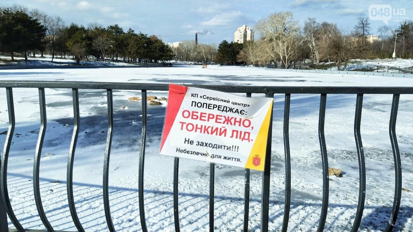 На замерзшем пруду в Одесском парке устроили спортивные состязания, - ФОТО, фото-1, ФОТО: Александр Жирносенко.