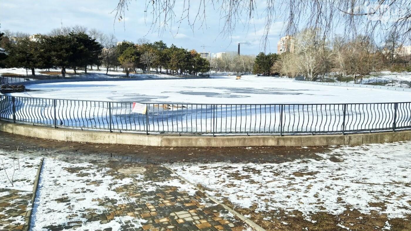 На замерзшем пруду в Одесском парке устроили спортивные состязания, - ФОТО, фото-25, ФОТО: Александр Жирносенко.