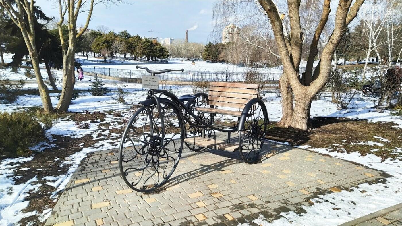 Фотопятница в Одессе: февральские морозы в Южной Пальмире, - ФОТО, фото-22, ФОТО: Александр Жирносенко