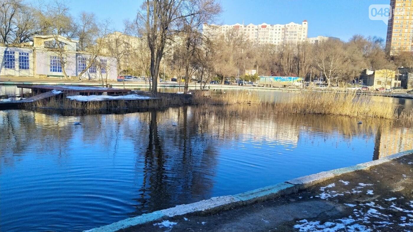Фотопятница в Одессе: февральские морозы в Южной Пальмире, - ФОТО, фото-40, ФОТО: Александр Жирносенко