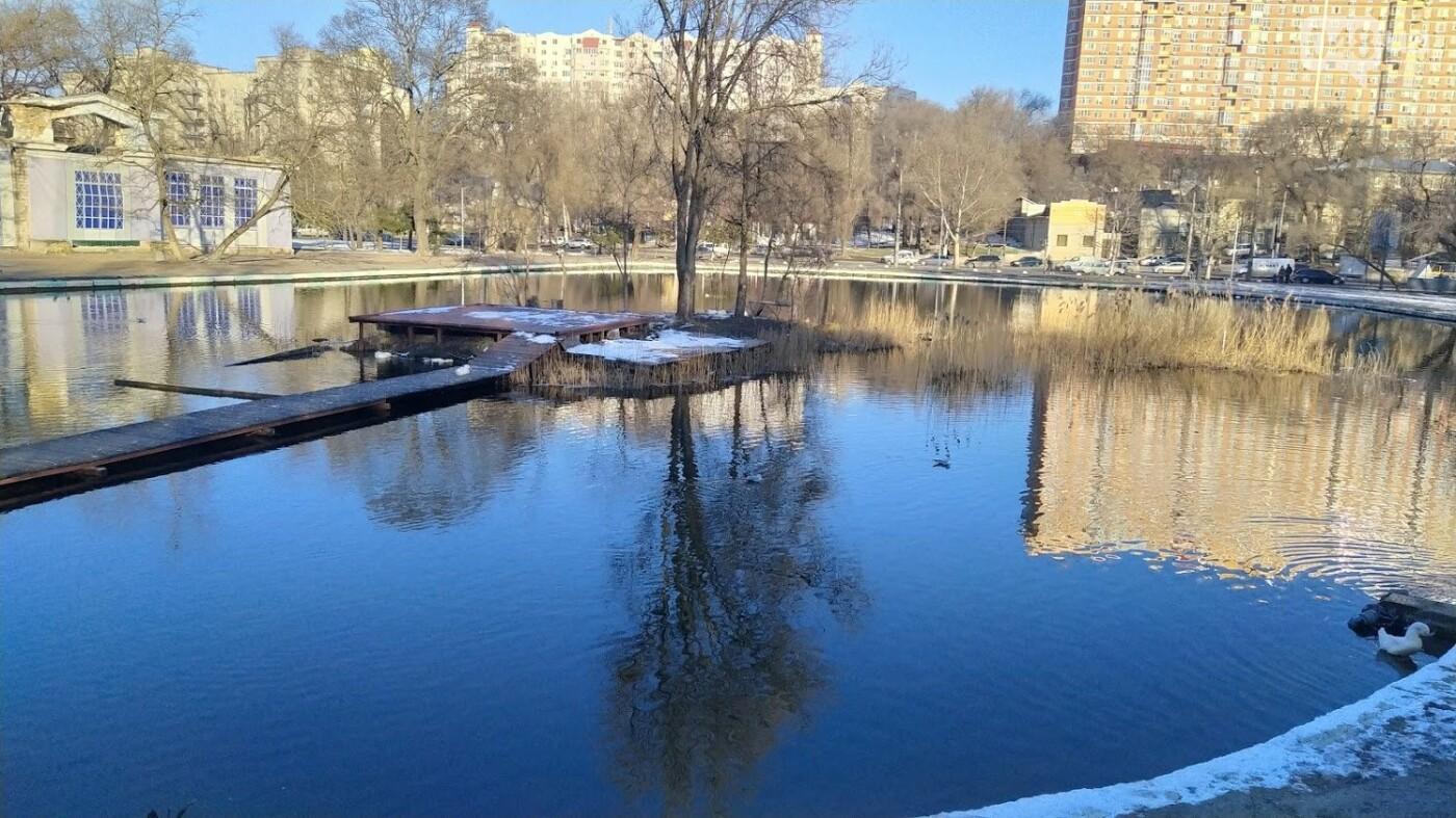 Фотопятница в Одессе: февральские морозы в Южной Пальмире, - ФОТО, фото-41, ФОТО: Александр Жирносенко