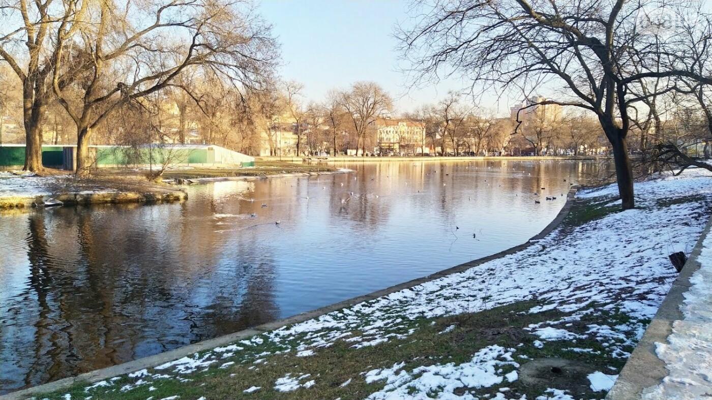 Фотопятница в Одессе: февральские морозы в Южной Пальмире, - ФОТО, фото-34, ФОТО: Александр Жирносенко