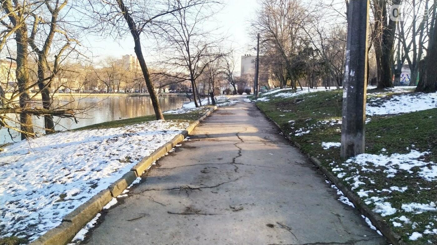 Фотопятница в Одессе: февральские морозы в Южной Пальмире, - ФОТО, фото-33, ФОТО: Александр Жирносенко