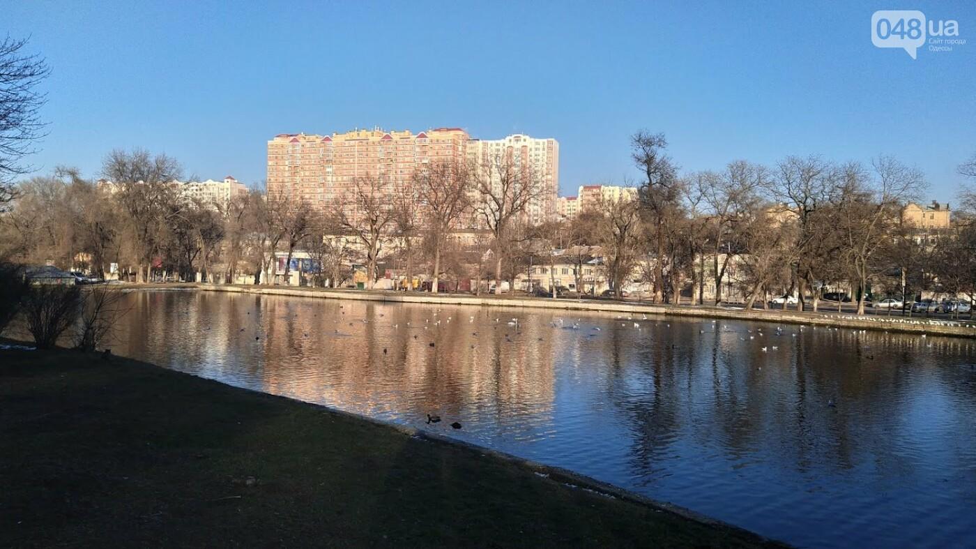 Фотопятница в Одессе: февральские морозы в Южной Пальмире, - ФОТО, фото-36, ФОТО: Александр Жирносенко