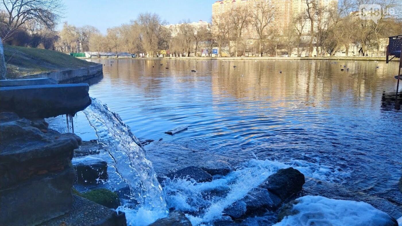 Фотопятница в Одессе: февральские морозы в Южной Пальмире, - ФОТО, фото-37, ФОТО: Александр Жирносенко