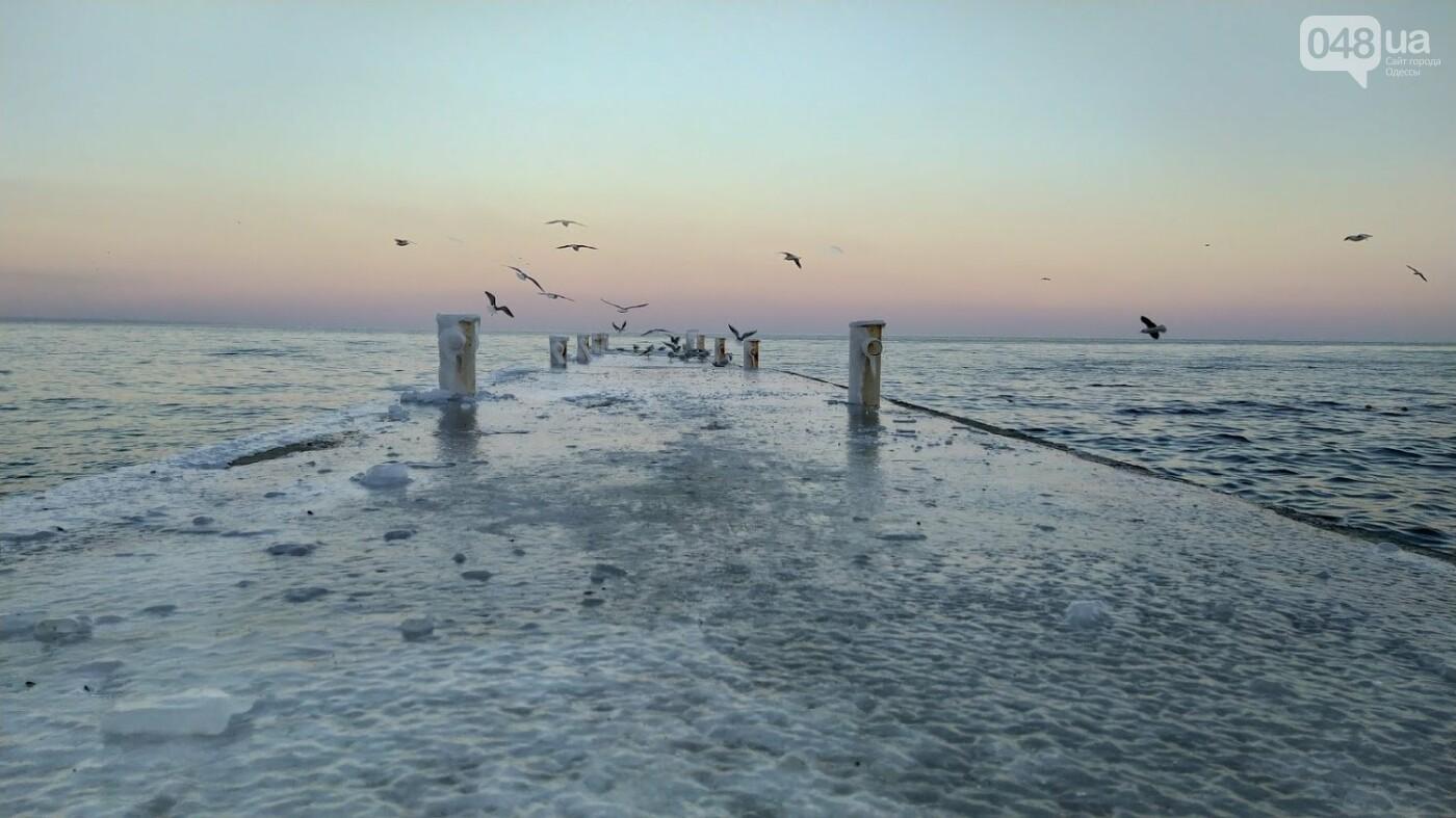 Фотопятница в Одессе: февральские морозы в Южной Пальмире, - ФОТО, фото-9, ФОТО: Александр Жирносенко