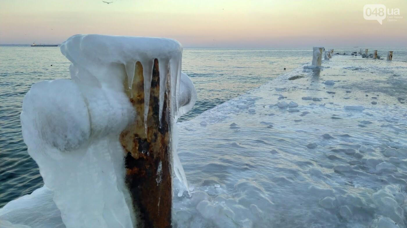 Фотопятница в Одессе: февральские морозы в Южной Пальмире, - ФОТО, фото-10, ФОТО: Александр Жирносенко
