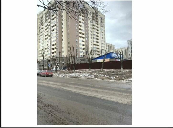 Одесский супермаркет незаконно спилил около 20 деревьев на Слободке, - ФОТО, фото-2