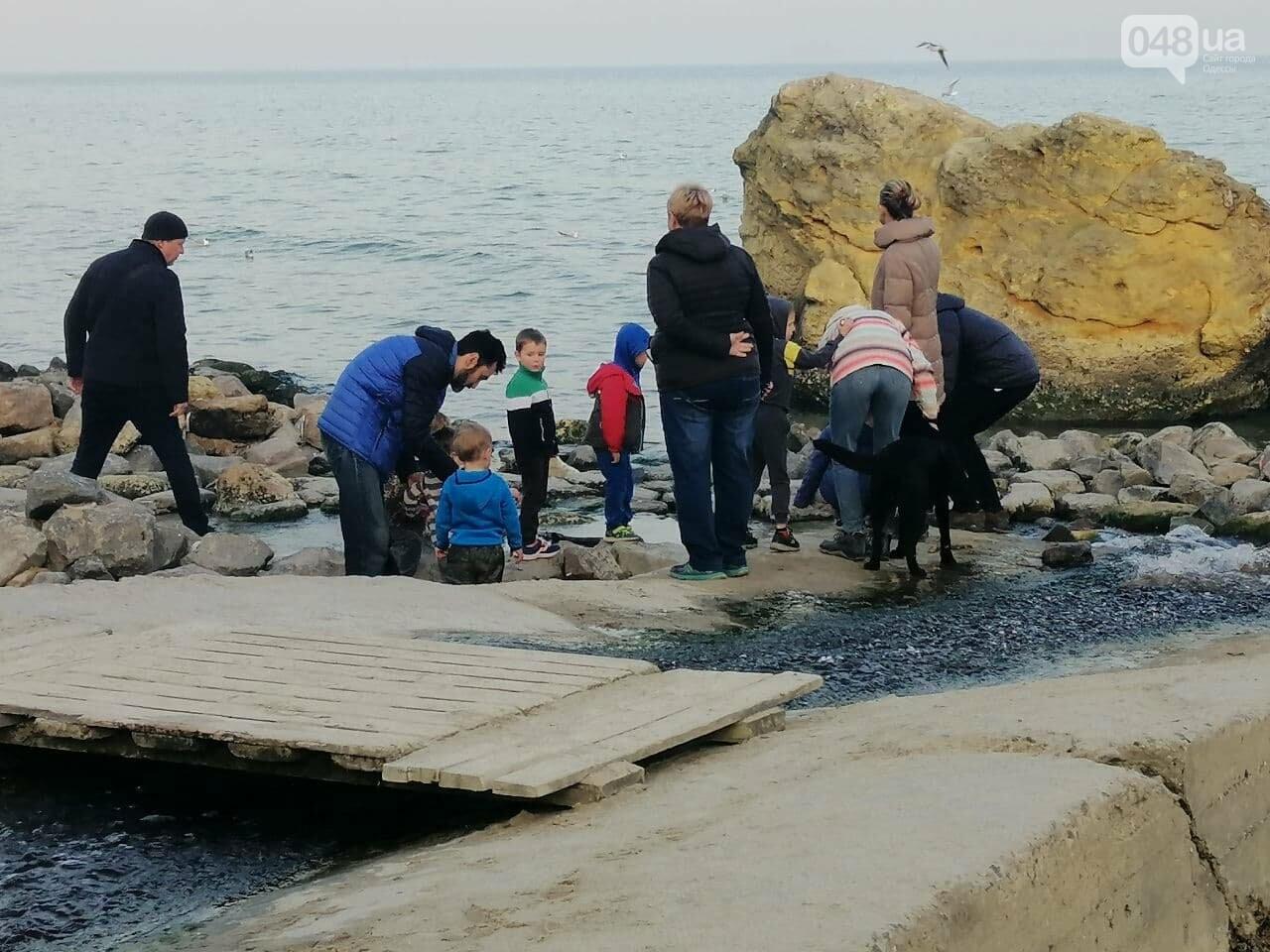 Пианино на Отраде: В Одессе на пляже звучит музыка,- ФОТО, ВИДЕО , фото-7