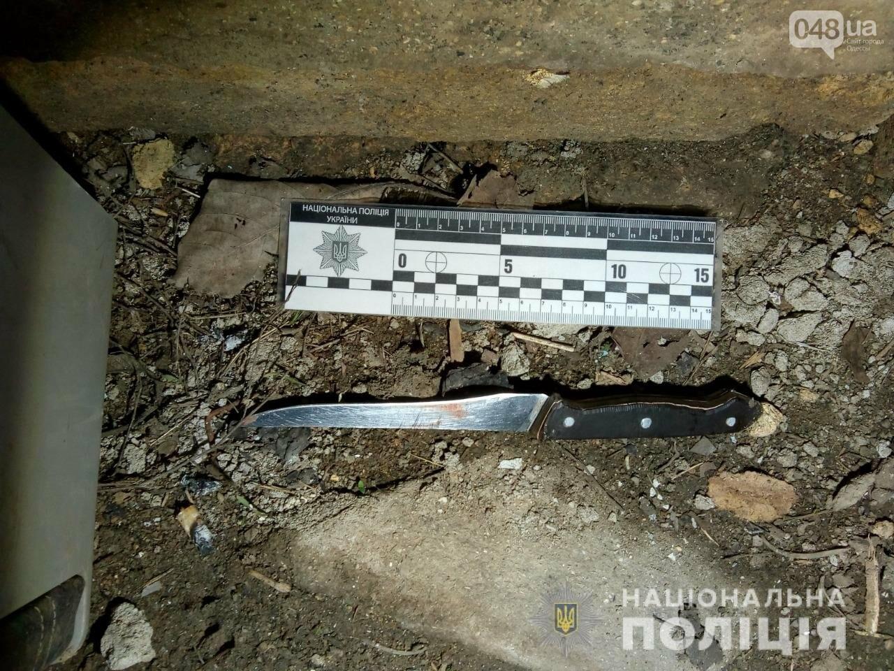 В Одесской области распитие алкоголя закончилось кровопролитием, - ФОТО, фото-1