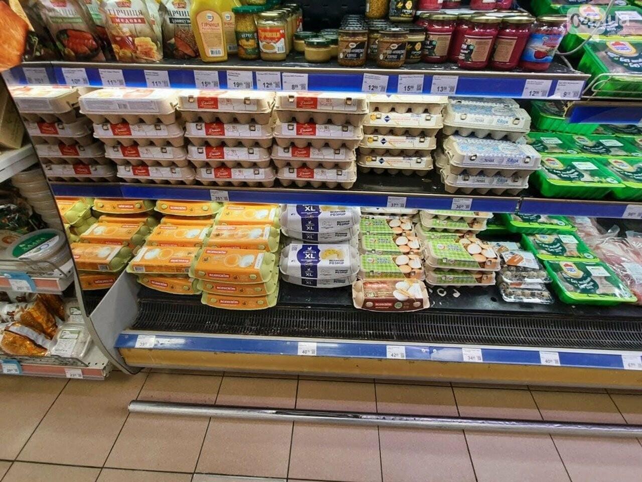 Где купить куриные яйца по самой выгодной цене: супермаркеты Одессы, - ФОТО, фото-2
