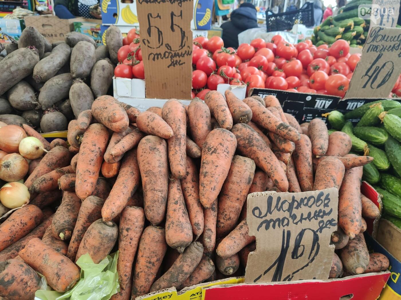 Топинамбур, помело, редис: почем на одесском Привозе фрукты и овощи, - ФОТО, фото-2