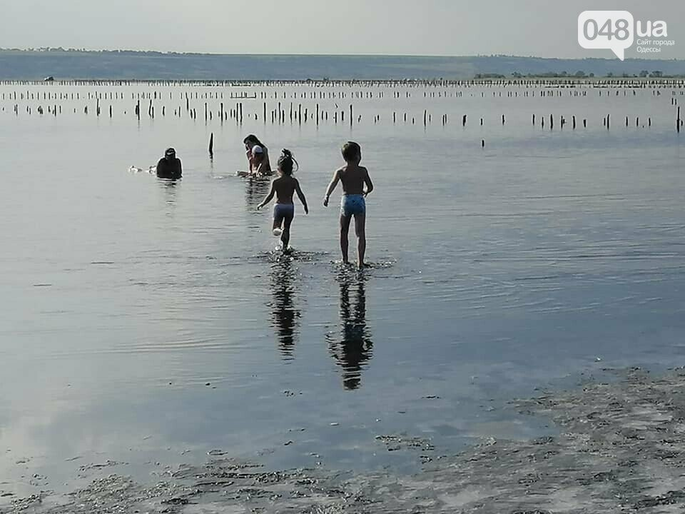 Кабмин решил создать национальный природный парк вблизи Одессы,- ФОТО, фото-1