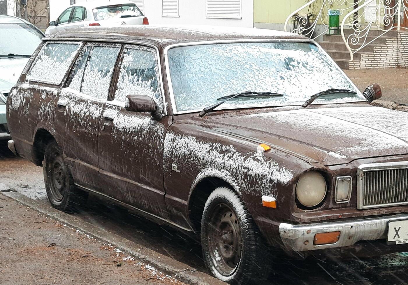 Зима не хочет уходить: в Одессе пошёл мокрый снег, - ФОТО, фото-9