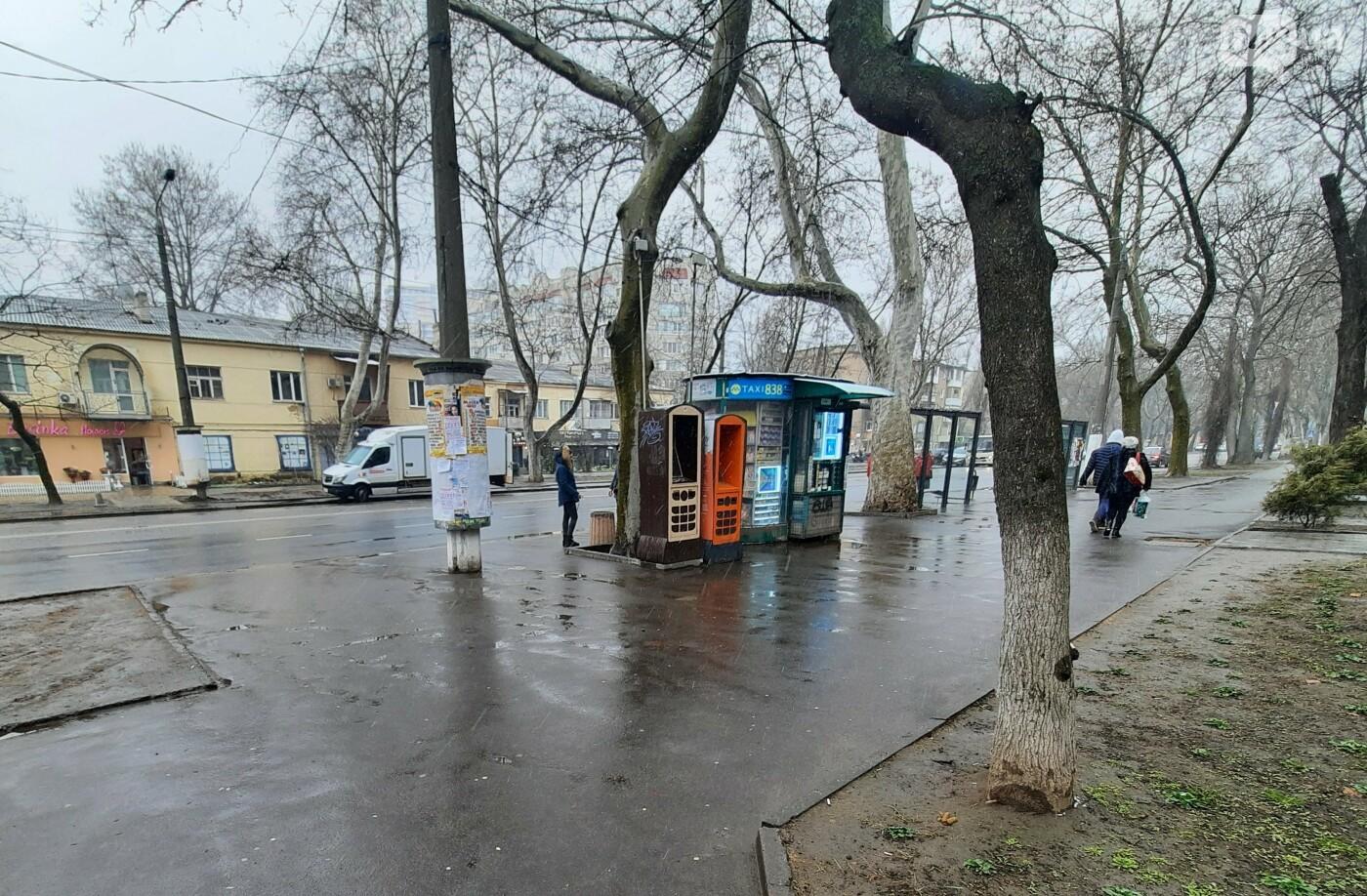 Зима не хочет уходить: в Одессе пошёл мокрый снег, - ФОТО, фото-12