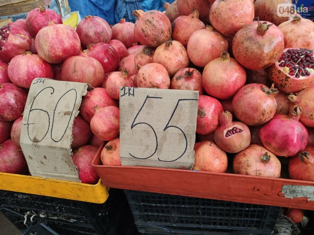 Ананас, грейпфрут, кабачки: почем на одесском Привозе овощи и фрукты, - ФОТО, фото-4
