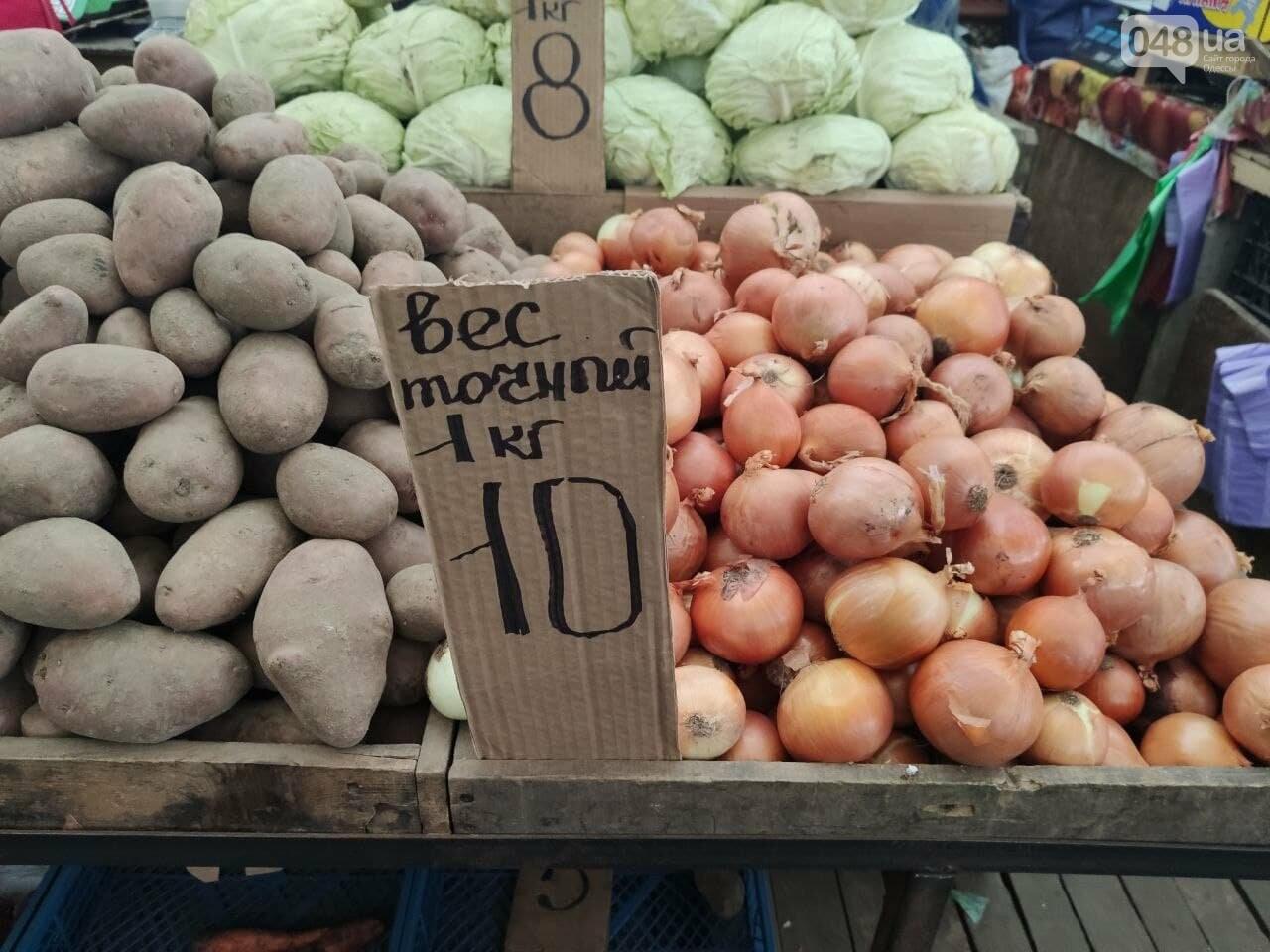 Ананас, грейпфрут, кабачки: почем на одесском Привозе овощи и фрукты, - ФОТО, фото-2