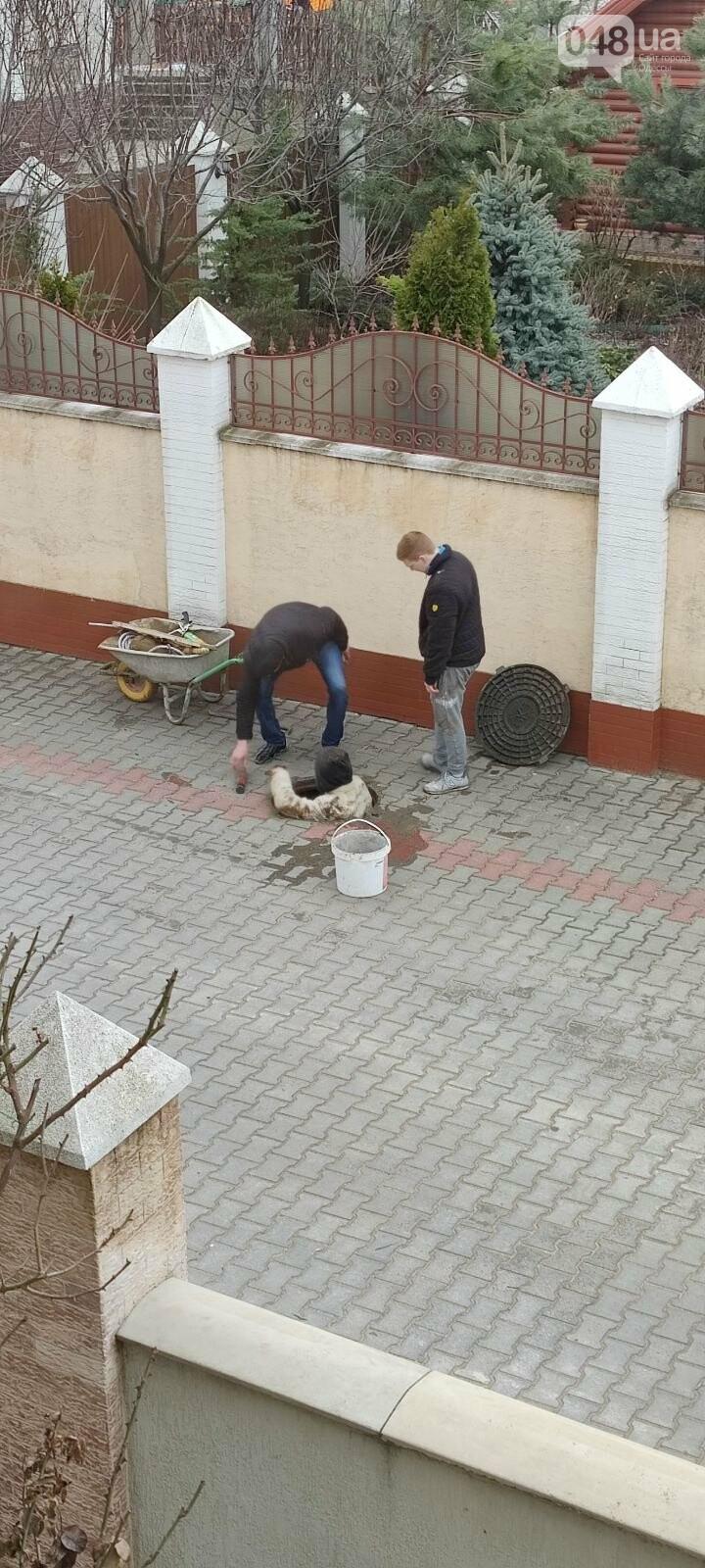 Война за воду: в котеджном поселке под Одессой произошла потасовка со стрельбой,- ФОТО, ВИДЕО, фото-7