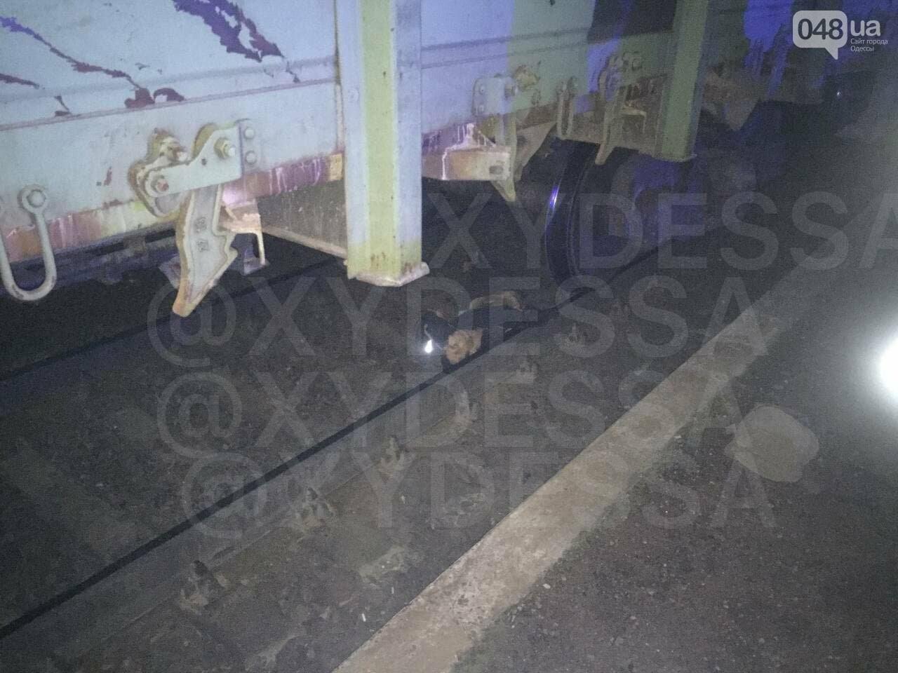 В Одессе мужчина бросился под поезд, фото-1