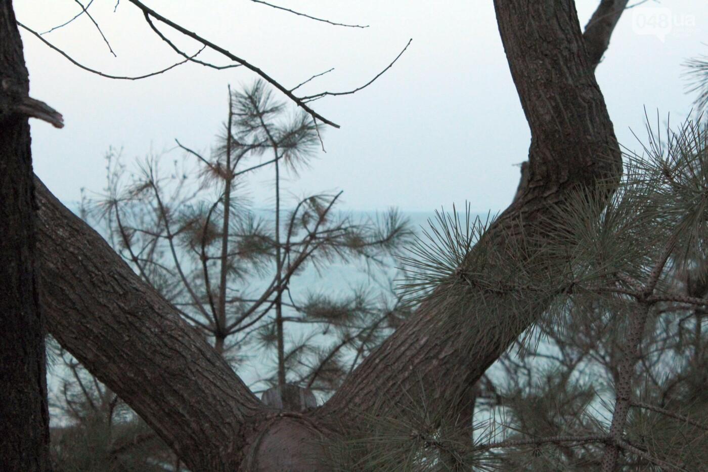 Апрель, Одесса, пляж: закат раскрасил море лазурными красками,- ФОТОПЯТНИЦА, фото-16