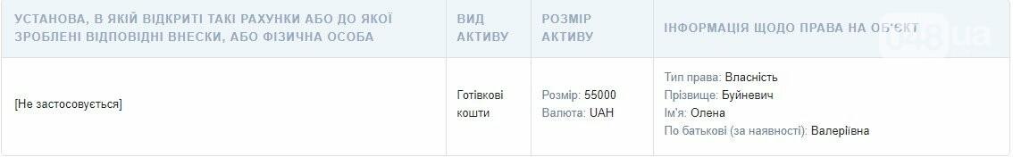 Декларация Буйневич: сколько за год заработала директор департамента образования Одессы, фото-1