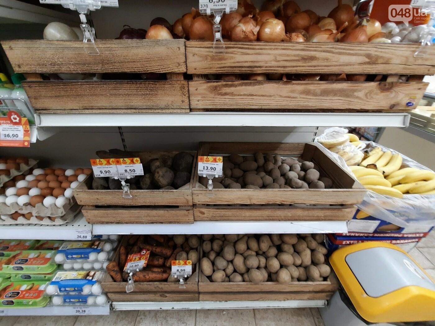 Редиска, помидоры и авокадо: как не переплачивать за покупки в супермаркетах Одессы, - ФОТО, фото-3