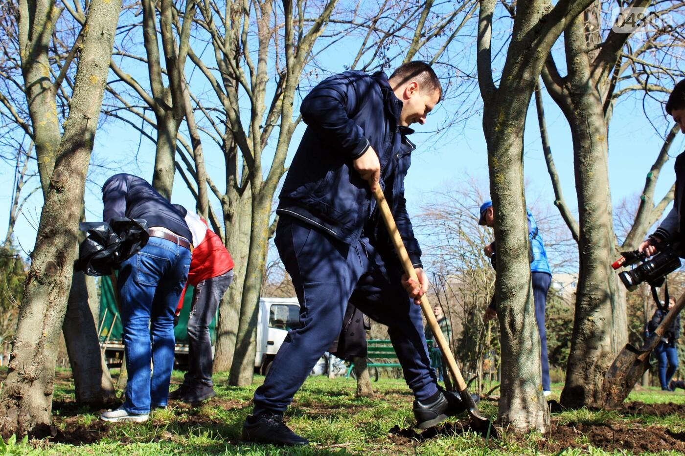 Возле Одесской обладминистрации провели субботник и высадили сосны, - ФОТОРЕПОРТАЖ, ВИДЕО , фото-9