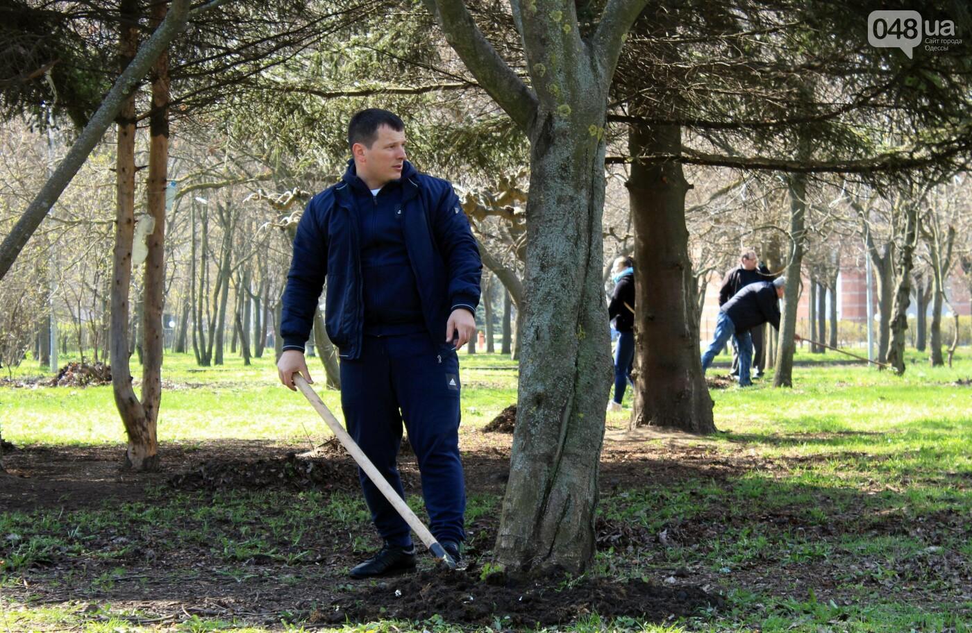 Возле Одесской обладминистрации провели субботник и высадили сосны, - ФОТОРЕПОРТАЖ, ВИДЕО , фото-10