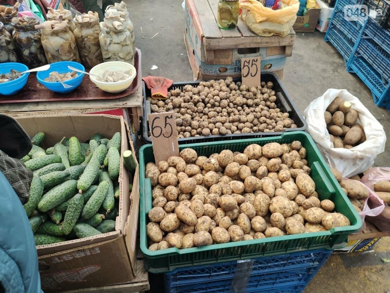 Молодой картофель, клубника, кабачки: почем на одесском Привозе овощи и фрукты, - ФОТО, фото-1