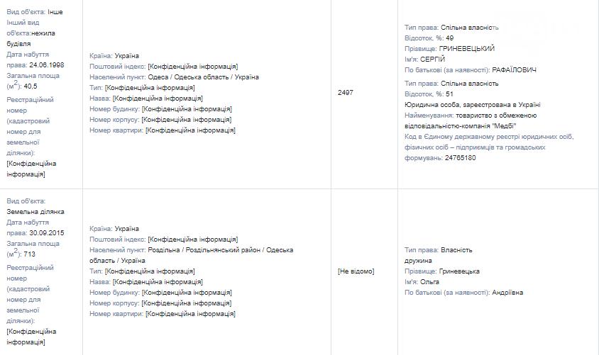 Иконы, драгметаллы и мебельный гарнитур: что задекларировал губернатор Одесской области Гриневецкий , фото-5