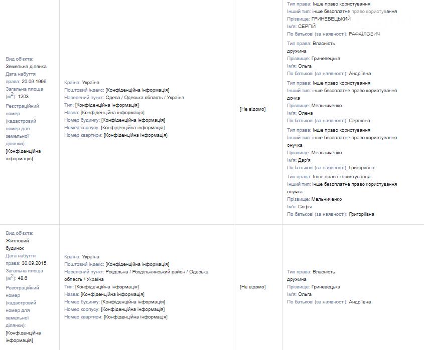 Иконы, драгметаллы и мебельный гарнитур: что задекларировал губернатор Одесской области Гриневецкий , фото-4