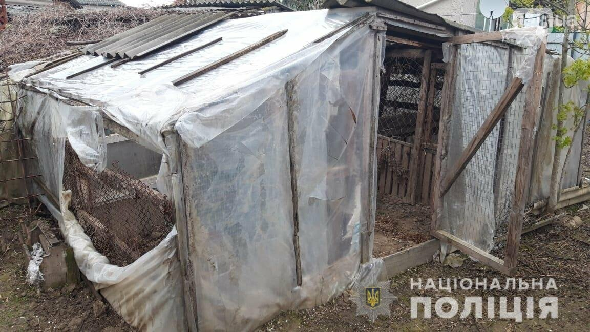 Взрывчатка и наркотики: полицейские задержали двух жителей Одесской области, - ФОТО, фото-2