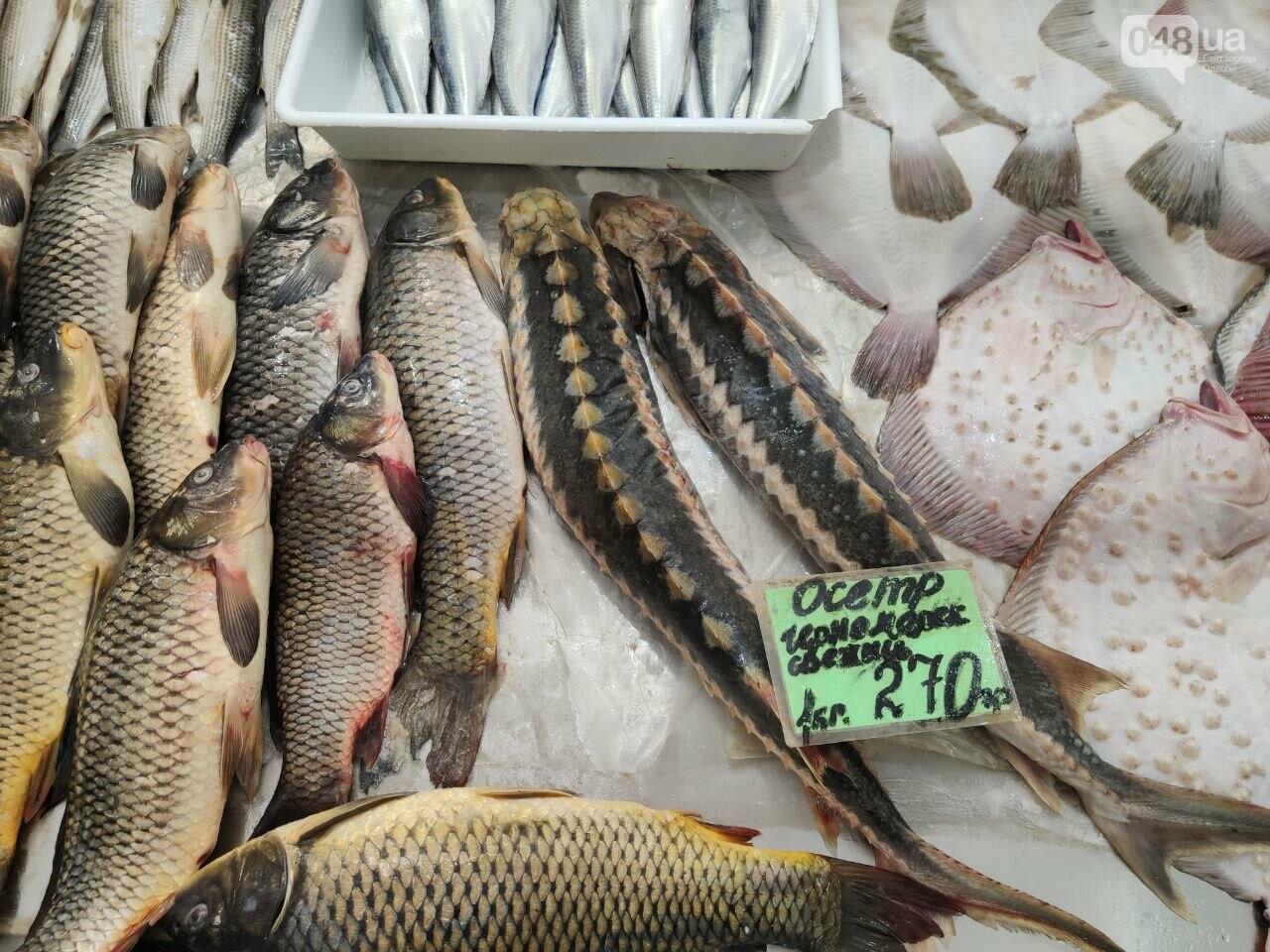 Осетр, мидии, хамса: рыбный четверг на одесском Привозе, - ФОТО, фото-4