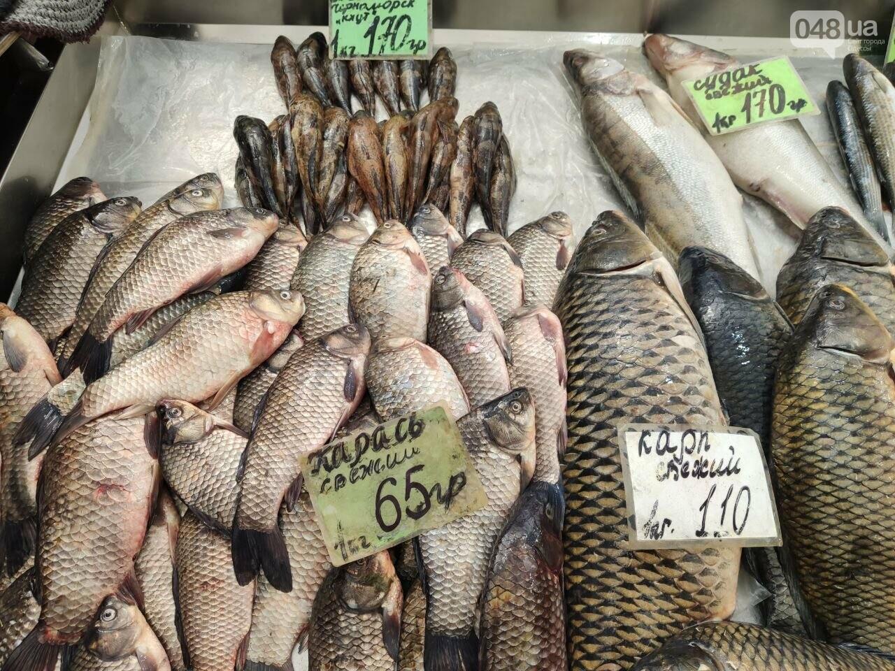 Осетр, мидии, хамса: рыбный четверг на одесском Привозе, - ФОТО, фото-5