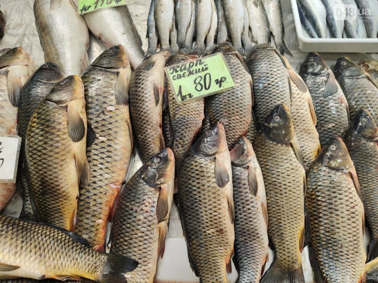 Осетр, мидии, хамса: рыбный четверг на одесском Привозе, - ФОТО, фото-3