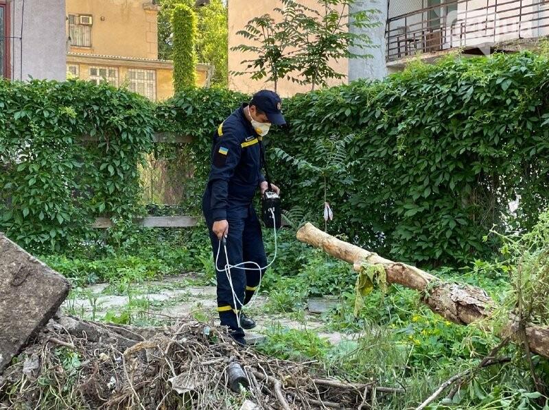 Локальная экологическая катастрофа: чем мог обернуться рейдерский захват в Одессе, - ФОТО, ВИДЕО, фото-10