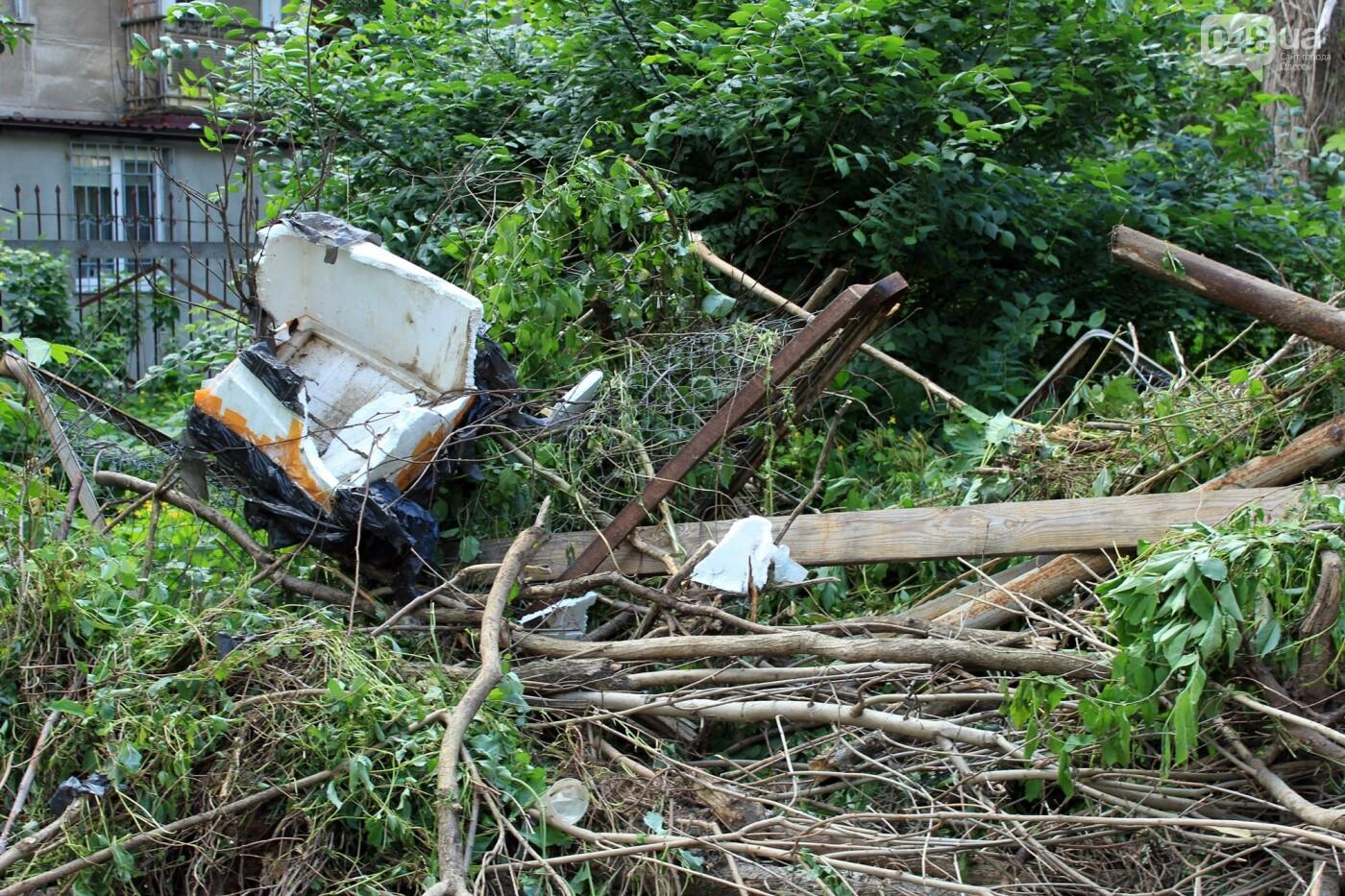 Локальная экологическая катастрофа: чем мог обернуться рейдерский захват в Одессе, - ФОТО, ВИДЕО, фото-7