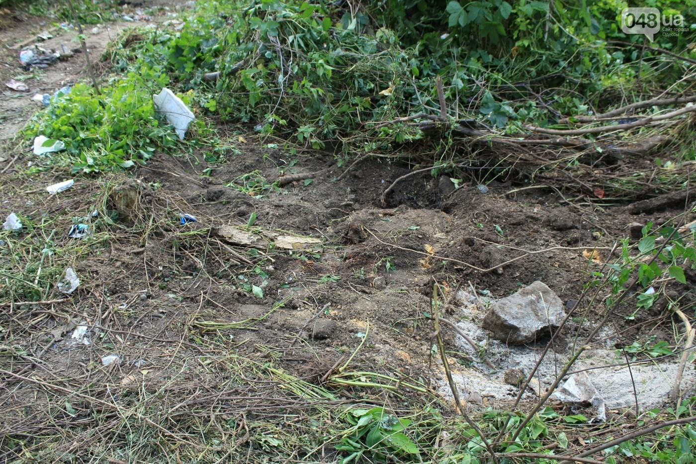Локальная экологическая катастрофа: чем мог обернуться рейдерский захват в Одессе, - ФОТО, ВИДЕО, фото-6
